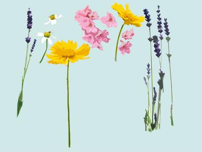 flowern.jpg