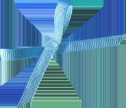 ribbon11_web.png